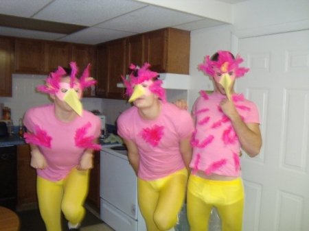 Flamingos: Guys hate them, Ladies love them.